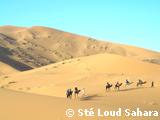 Traversée du désert marocain