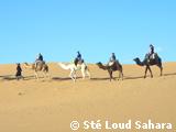 Séjour Sud Maroc / 6Jours