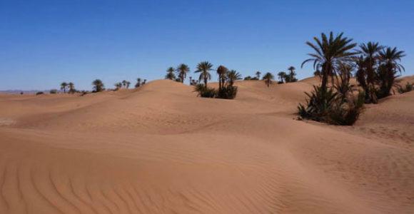 excursions-desert-zagora