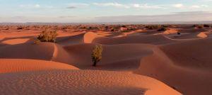 Spécial Randonnée Désert Maroc