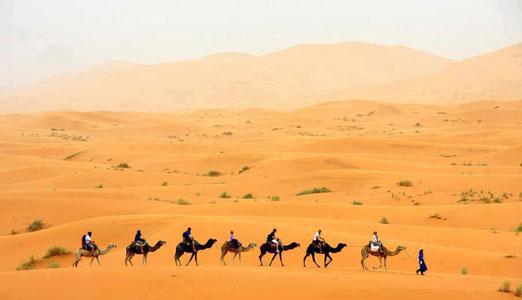 Découverte de la vie des nomades