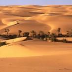 Voyage Désert Maroc Pas Cher
