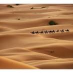 Voyage pas Cher Maroc Tout Compris